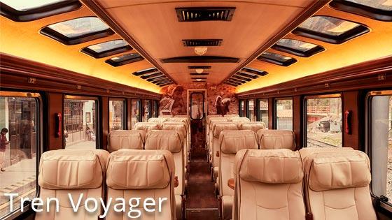 Tren Voyager